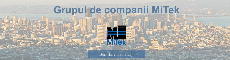 grupul de companii MiTek